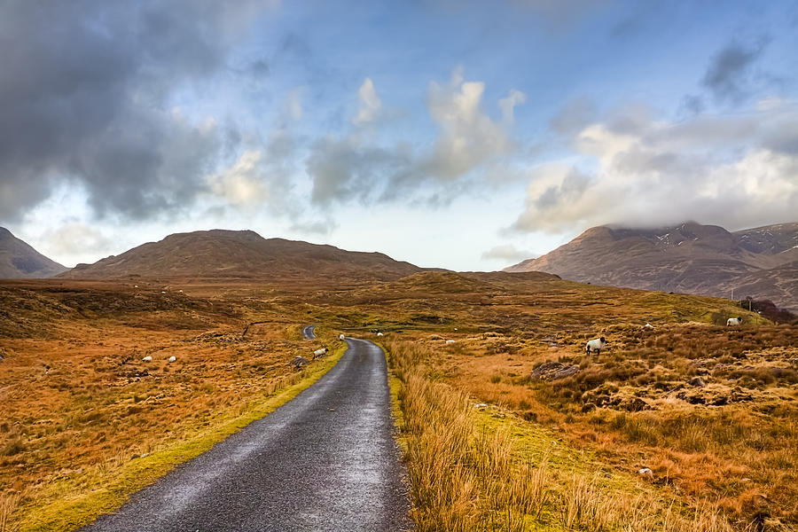 wild-landscape-of-connemara-ireland-mark-e-tisdale